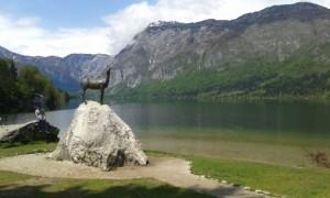 a Bohinj-i tó